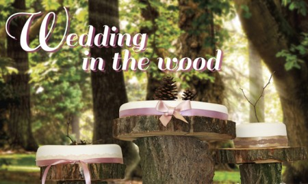 Wedding in the wood 02