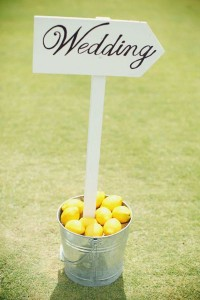 Weddingsign met citroenen