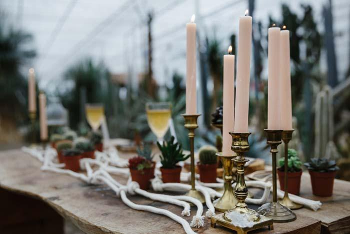 Desert Cactus Wedding Styled Shoot