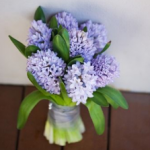 Duurzaam-Nederlandse bloem3